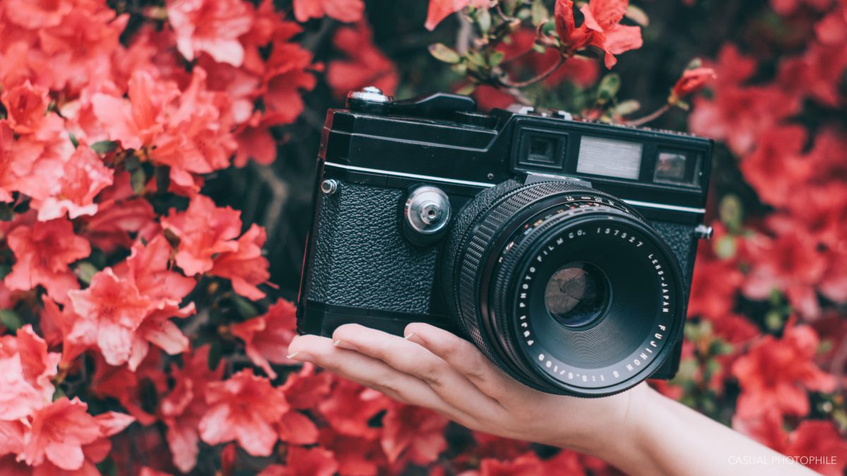 Fujica GM670 Review- the Ideal Handheld 6x7 - Casual Photophile